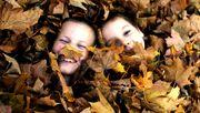 Schön, schöner, Herbst: Was ist das beste Bild?