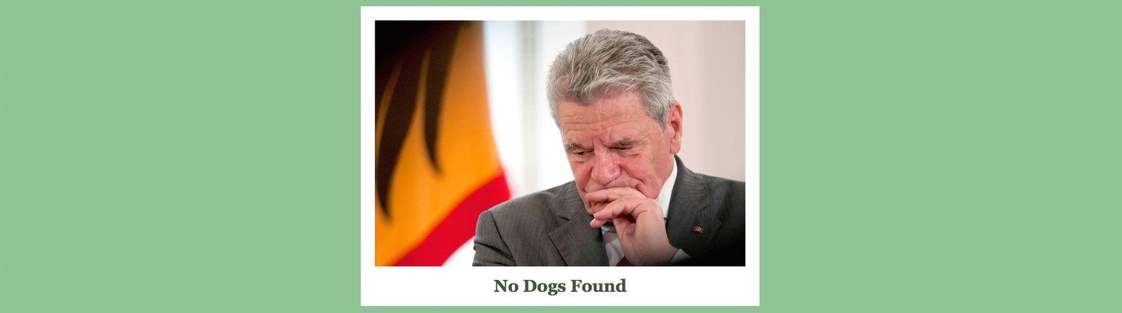 Gauck Hund