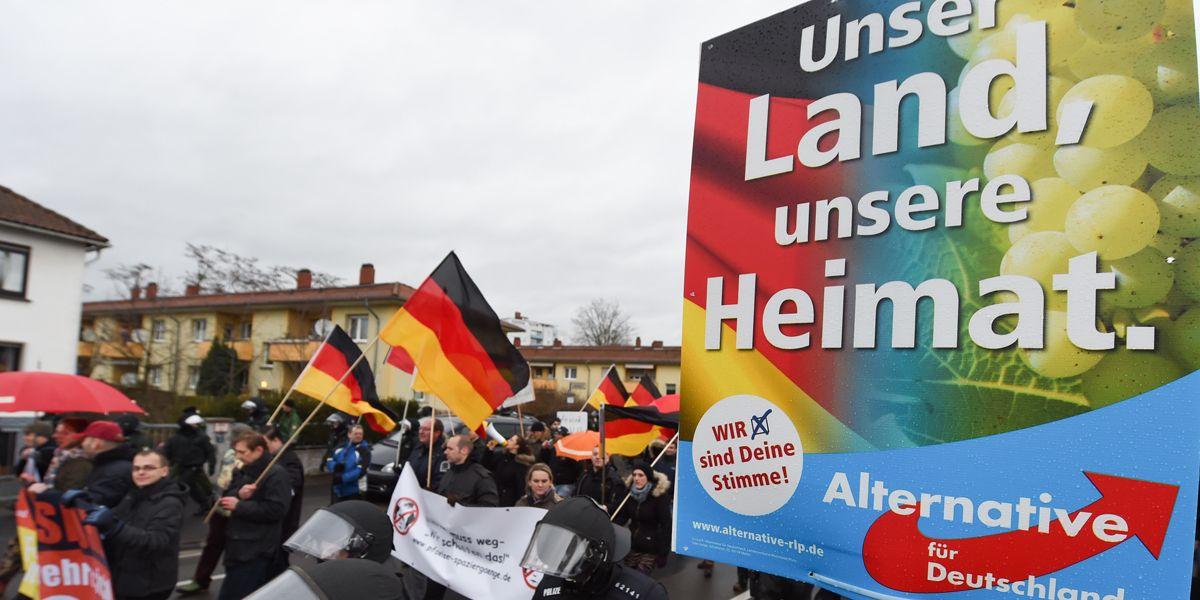 Wahlplakat Afd Mainz Arne Dedert