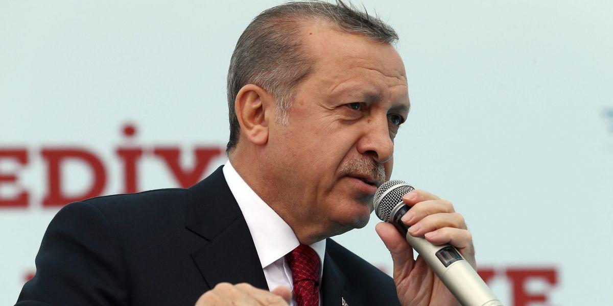 Erdogan Doepfner Dpa