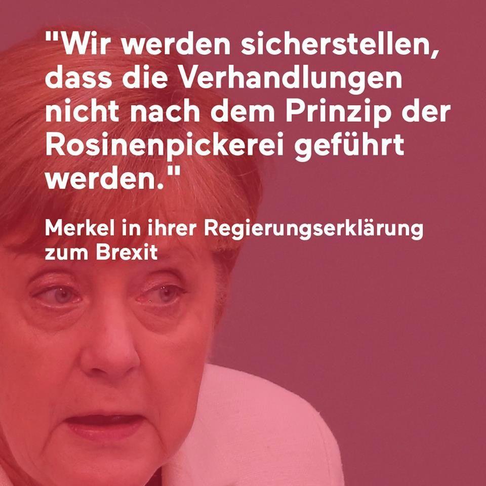 Merkel Regierungserklarung Brexit