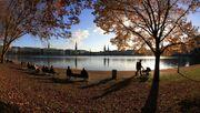 Warum der Herbst in Hamburg am schönsten ist (und was du unternehmen kannst)