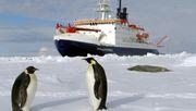 Vor der Antarktis soll weltgrößtes Meeresschutzgebiet entstehen