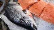 Welchen Fisch darf man eigentlich noch essen?