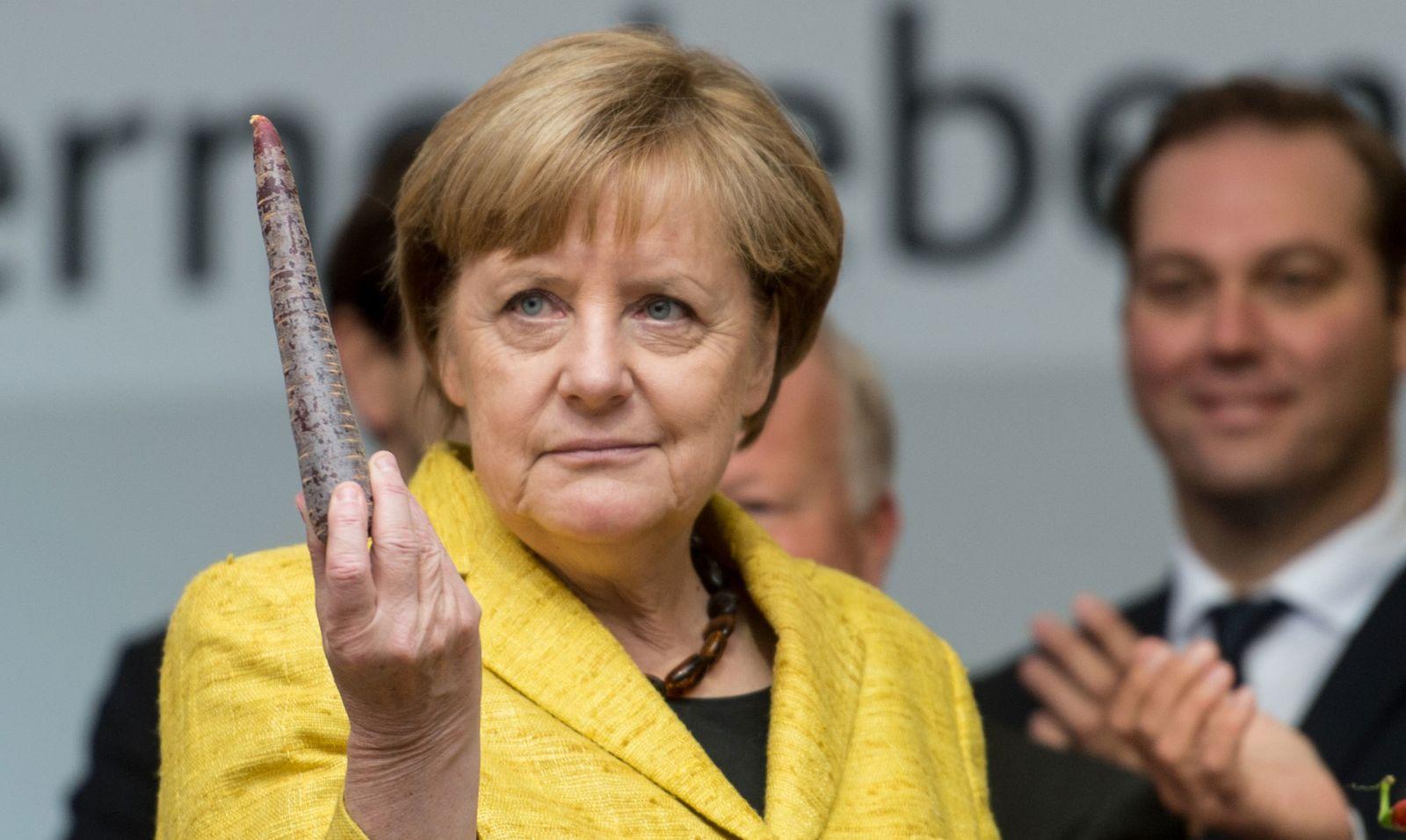 Angela Merkel Dpa Ruebe