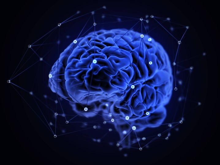 Human brain networks illustration Human brain networks illustration PUBLICATIONxINxGERxSUIxHUNxONLY ANDRZEJxWOJCICKI/SCIENCExPHOTOxLIBRARY F020/1889