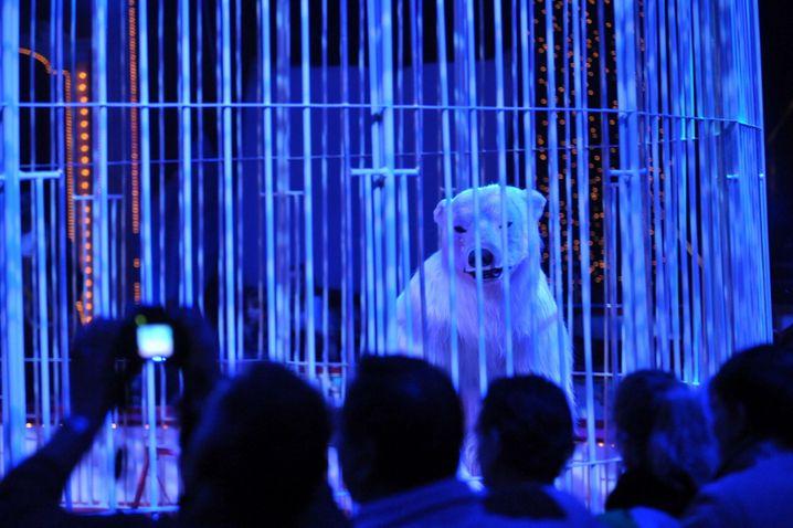 """Die Artistengruppe """"Eisbären"""" tritt am Samstag (19.12.2009) in Berlin bei der Premiere des Roncalli Weihnachtscircus 2009 auf. Die Show ist noch bis zum 03.01.2010 im Tempodrom zu sehen. Foto: Klaus-Dietmar Gabbert dpa/lbn +++(c) dpa - Bildfunk+++   Verwendung weltweit"""