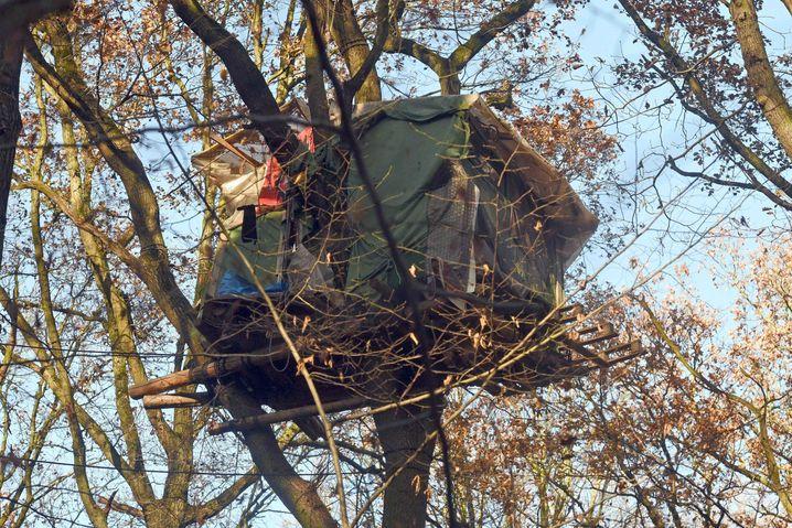 Ein Baumhaus von RWE-Gegnern ist am 28.11.2016 im Hambacher Forst in Kerpen (Nordrhein-Westfalen) in einem Baum zu sehen. Unter massiver Polizeipräsenz beginnen am Hambacher Forst die umstrittenen Rodungsarbeiten, die Tagebaubetreiber RWE auf ein Gebiet südlich der ehemaligenTrasse der Autobahn 4 ausgeweitet hat. Foto: Henning Kaiser/dpa +++(c) dpa - Bildfunk+++ | Verwendung weltweit