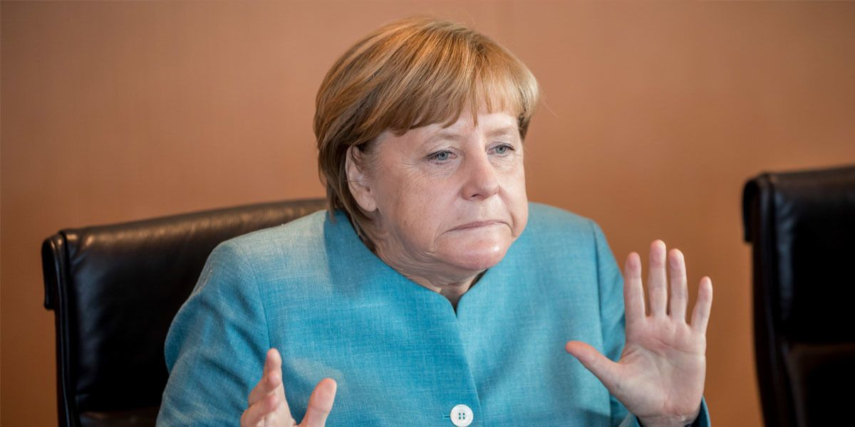 Merkel Schnauze Header