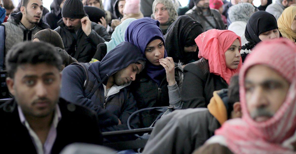 Syrien Abschiebung Haseloff