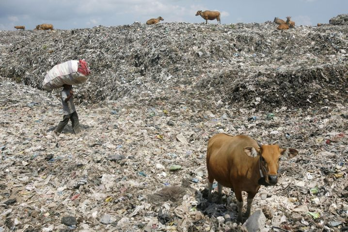 epa03194097 An Indonesian scavanger carries a bag with collected recycle materials on a rubbish dump site in Denpasar, Bali, Indonesia on 24 April 2012. Reports state that the Indonesian resort island of Bali is producing some 20,000 cubic meters of trash - per day. One of the bigest official dump site in the island has taken over more than 44 hectares of mangrove area, the reports said. EPA/MADE NAGI +++(c) dpa - Bildfunk+++  