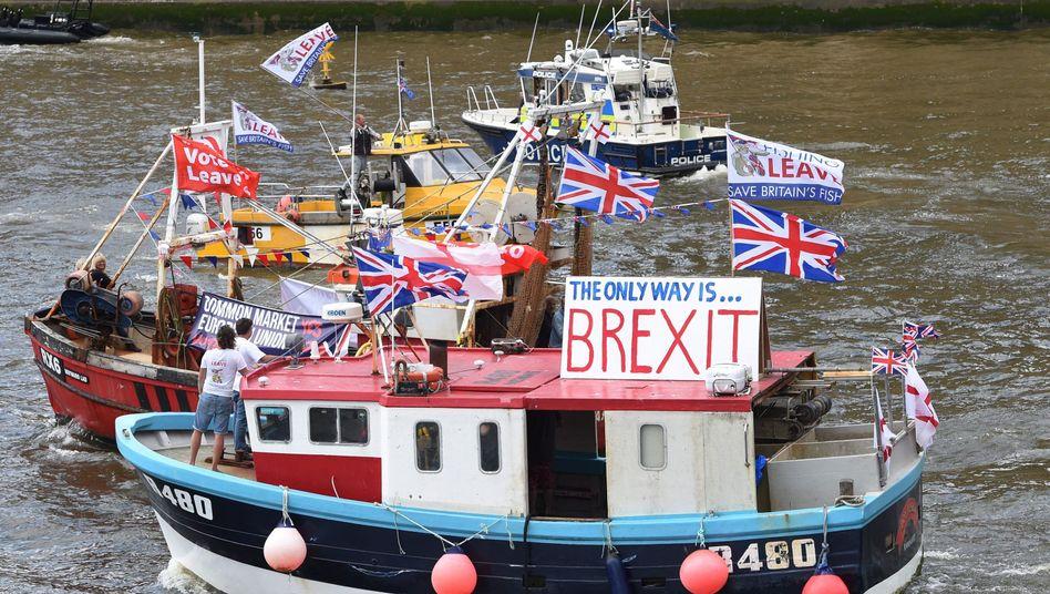 Fischerboote vor dem Brexit-Referendum (2016): Die Fischereifrage war eine der umstrittensten der Verhandlungen mit der EU