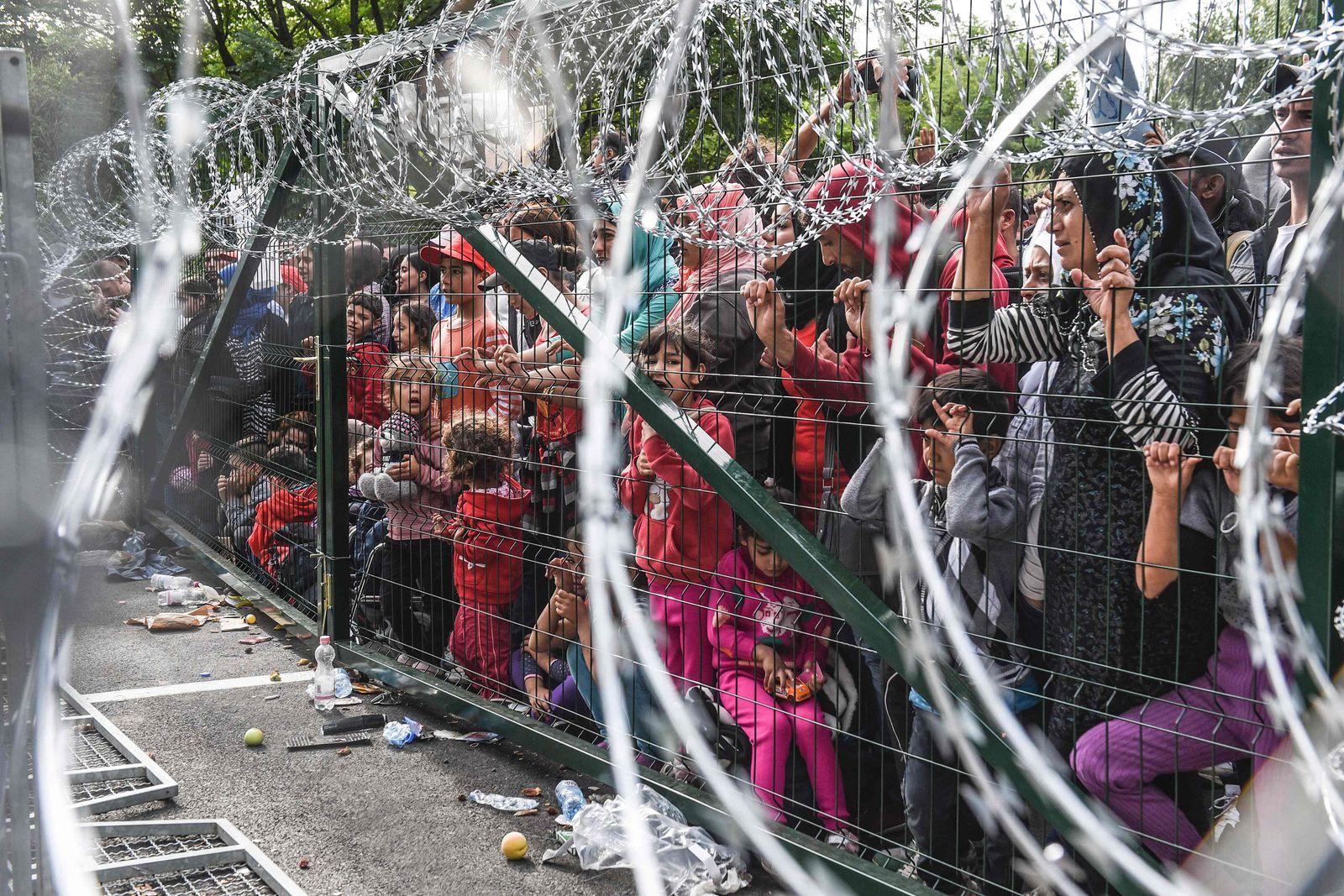 Flüchtlinge / Zaun / Ungarn / Horgos