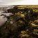 Permafrost - Kohlenstoffspeicher in Gefahr