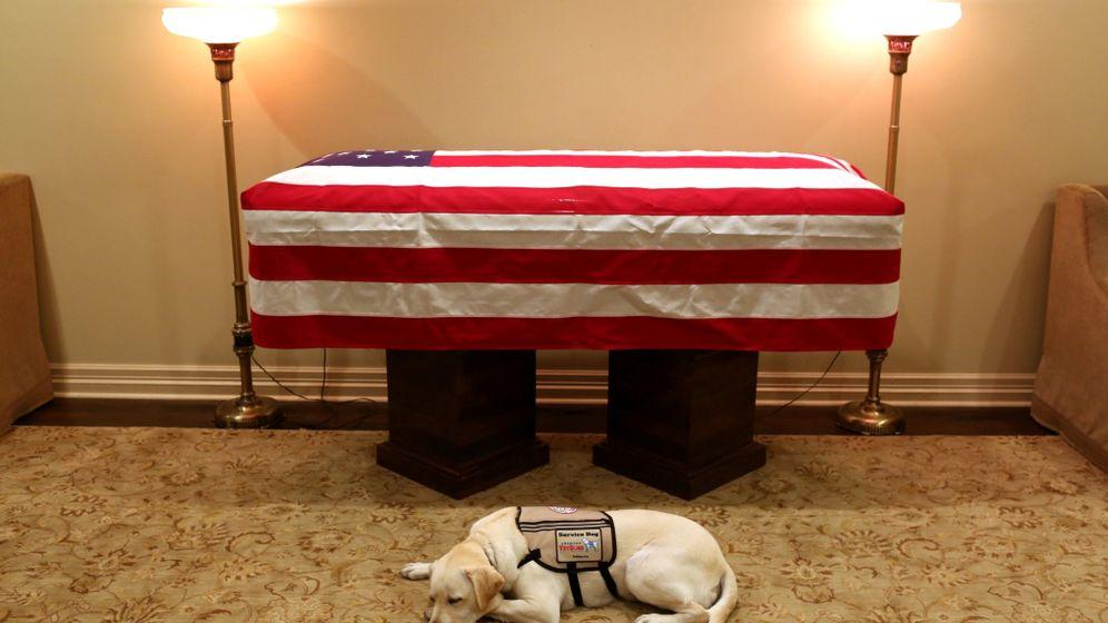 US-Präsidenten und ihre Hunde: Die First Dogs