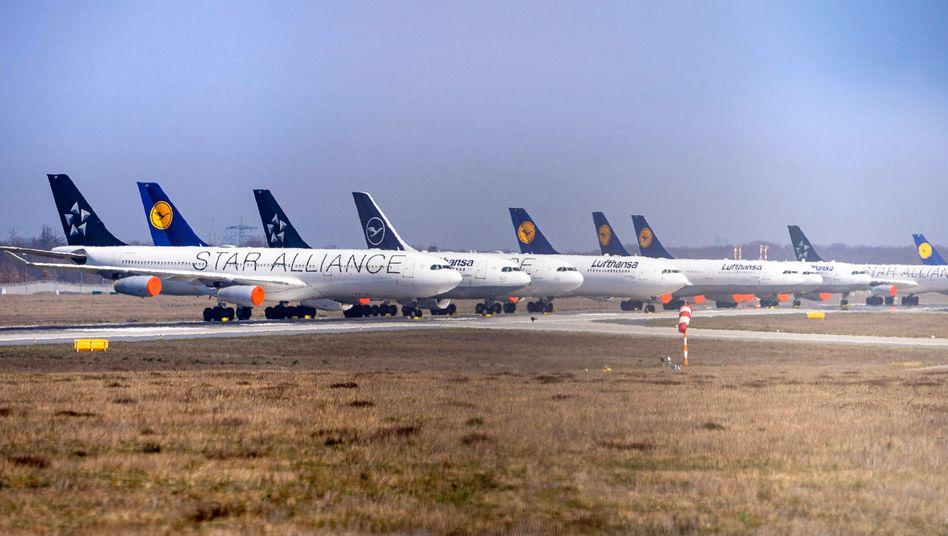"""Still gelegte Lufthansa-Jets am Flughafen Frankfurt: """"Es gibt unter den Kollegen nur noch ein Thema: Wie geht es weiter?"""""""
