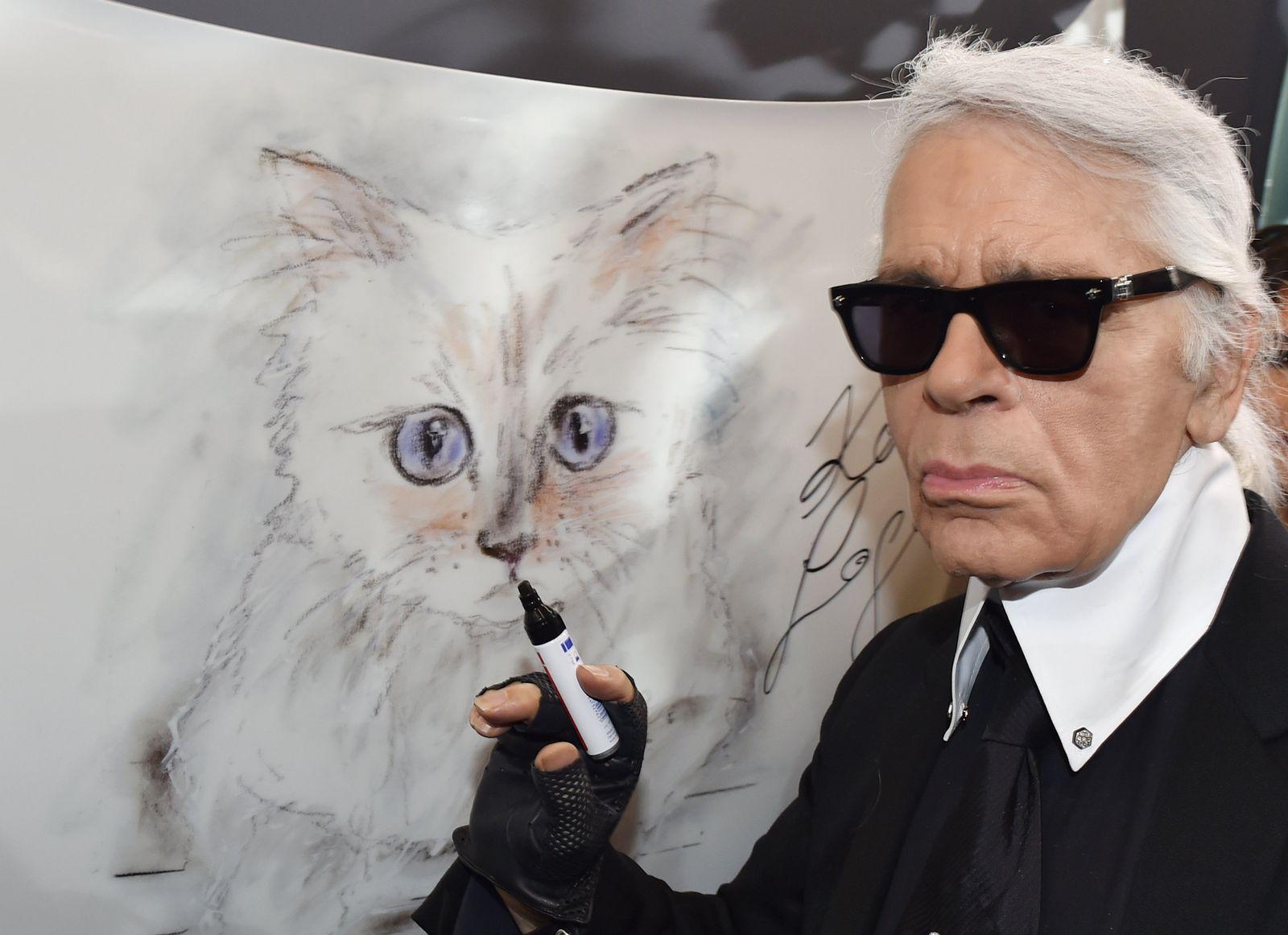 Karl Lagerfeld / Katze