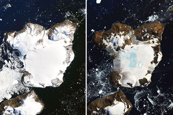 Satelliten-Vergleichsbild vom antarktischen Eagle Island vom 4. und 13. Februar 2020. Die Messstation liegt am nördlichen Ende der antarktischen Halbinsel.