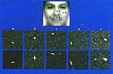 Elektronische Gesichtserkennung: Identifizierung ohne direkten Kontakt
