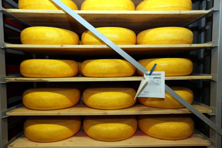 Gouda-Käse liegt im Reifelager einer Käserei: Millionen für Nahrunsmittelkonzerne
