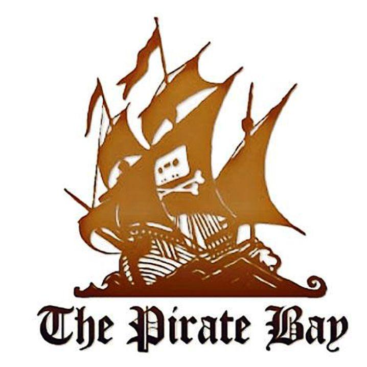 Pirate-Bay-Logo: Die Betreiber fühlen sich von der schwedischen Justiz unfair behandelt