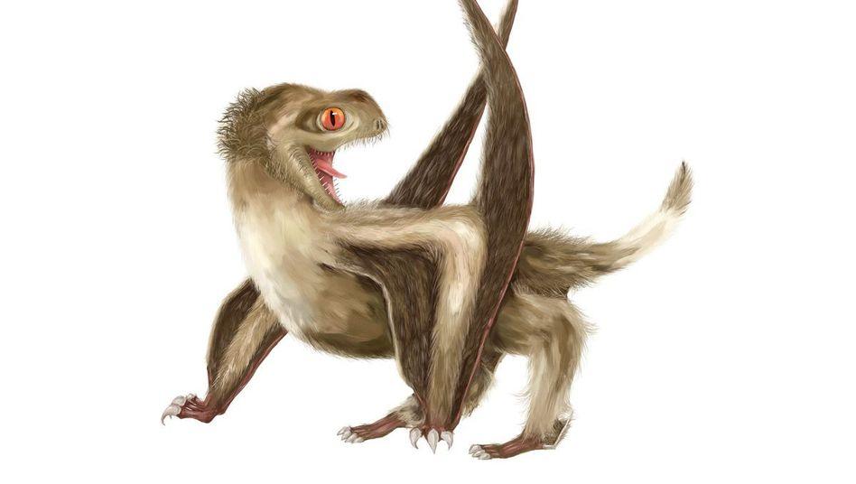 Einer der untersuchten Flugsaurier (künstlerische Darstellung)