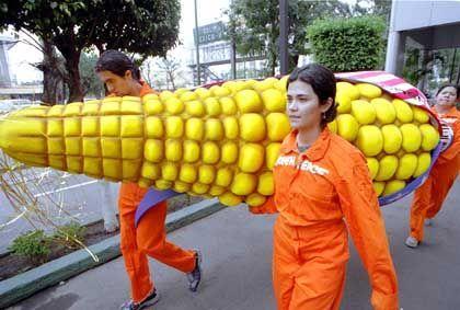 Greenpeace-Demo in Mexiko: Retter der verlorenen Banane