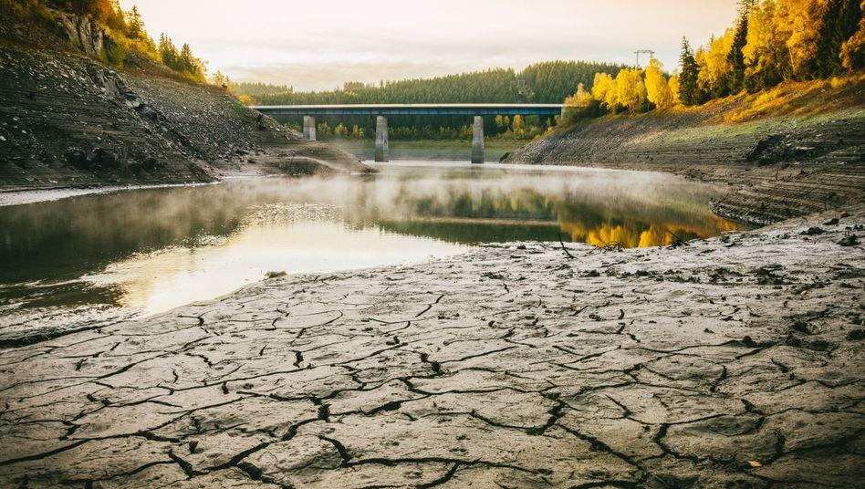 Okertalsperre im Harz: Die Harzwasserwerke sind der größte Trinkwasserversorger Niedersachsens, im September waren die sechs großen Stauseen nur noch zu 46 Prozent gefüllt