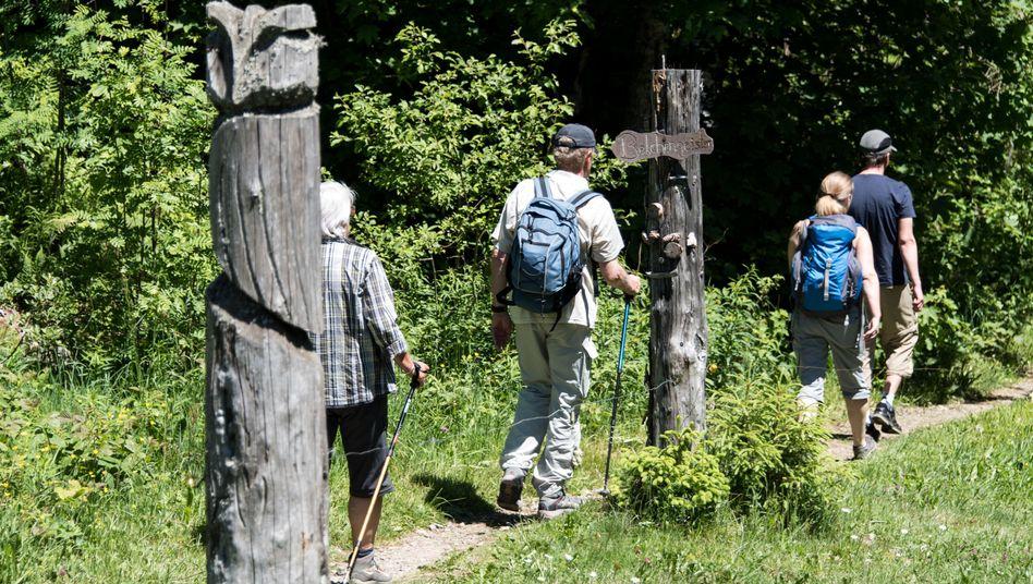 Schönau am Belchen: Ein Gebiet im Südschwarzwald wurde zum 16. Unesco-Biosphärenreservat in Deutschland zertifiziert