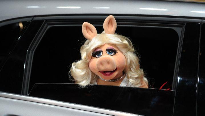 """Frauenrechtspreis für Miss Piggy: """"Sie ist einzigartig"""""""