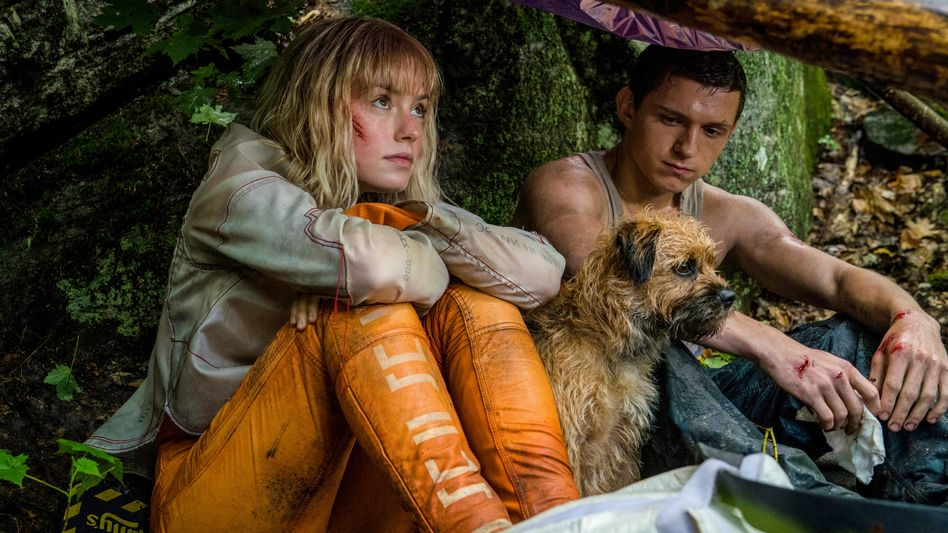 Daisy Ridley mit Tom Holland in »Chaos Walking«: »Komplizierte und nuancierte Frauenfiguren«