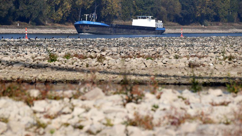 Niedrigwasser am Rhein bei Karlsruhe (Archiv)