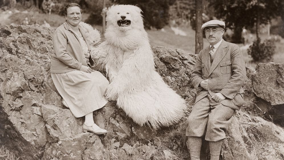 Flauschige Fotomotive: Deutschlands vergessener Eisbär-Hype