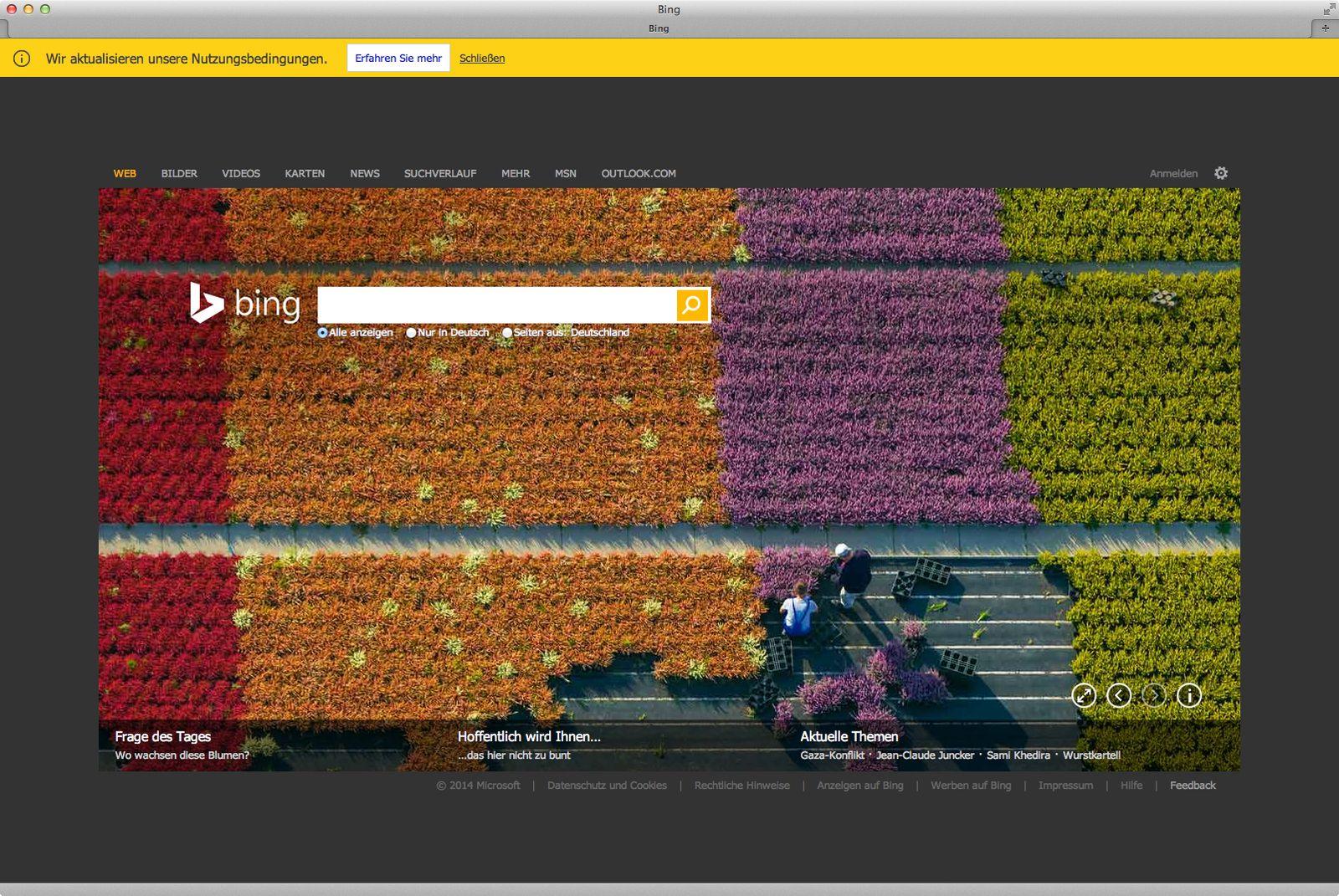 bing/ Screenshot