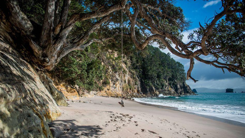 Strand in Neuseeland: Weltweit soll die Zahl der Schutzgebiete steigen