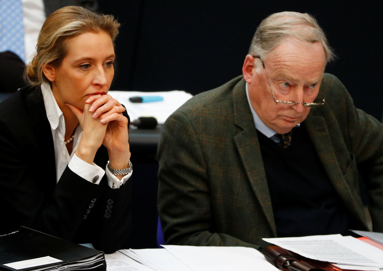 Regierungserklärung/ Bundestag/ Gauland/ Weidel