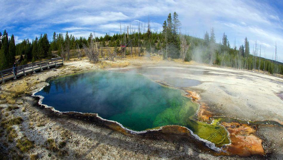 Abyss Pool (West Thumb Geyser Basin): Heiße Quellen verraten Magma in der Tiefe