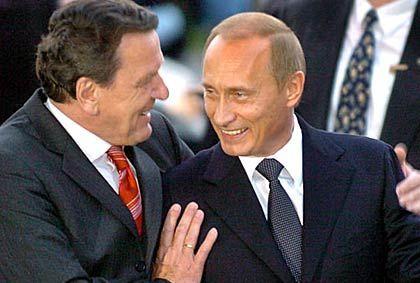 Putin (rechts, mit Schröder): Kein Lametta für den Präsidenten