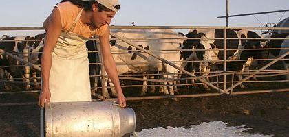 Argentinische Farmer: Zollerhöhungen für Fleischimporte