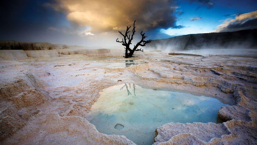 100 Jahre National Park Service: Von Yellowstone bis Yosemite