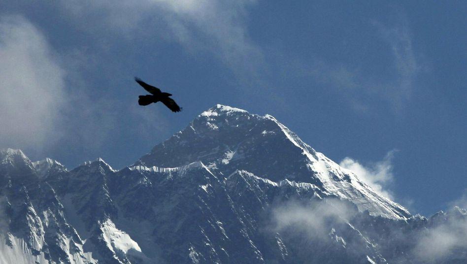 Mount Everest: Elf Tote am höchsten Berg der Welt