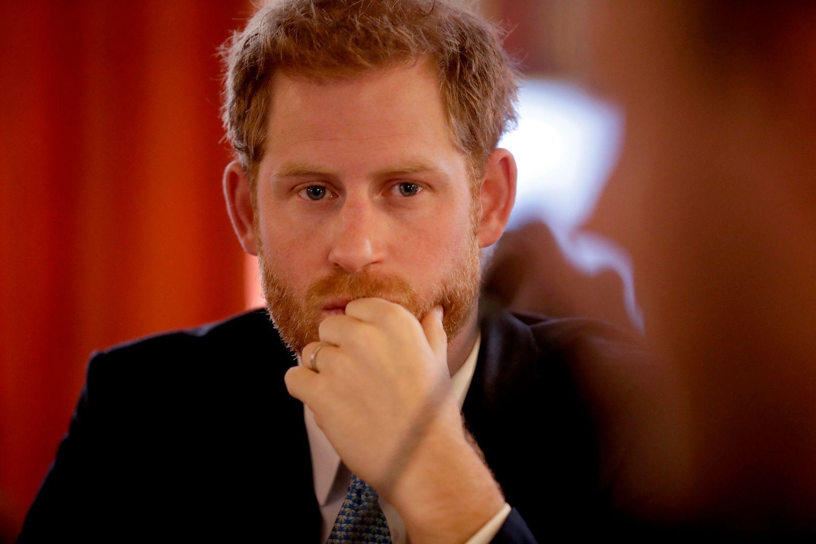 Jugendbotschafter des Commonwealth Prinz Harry
