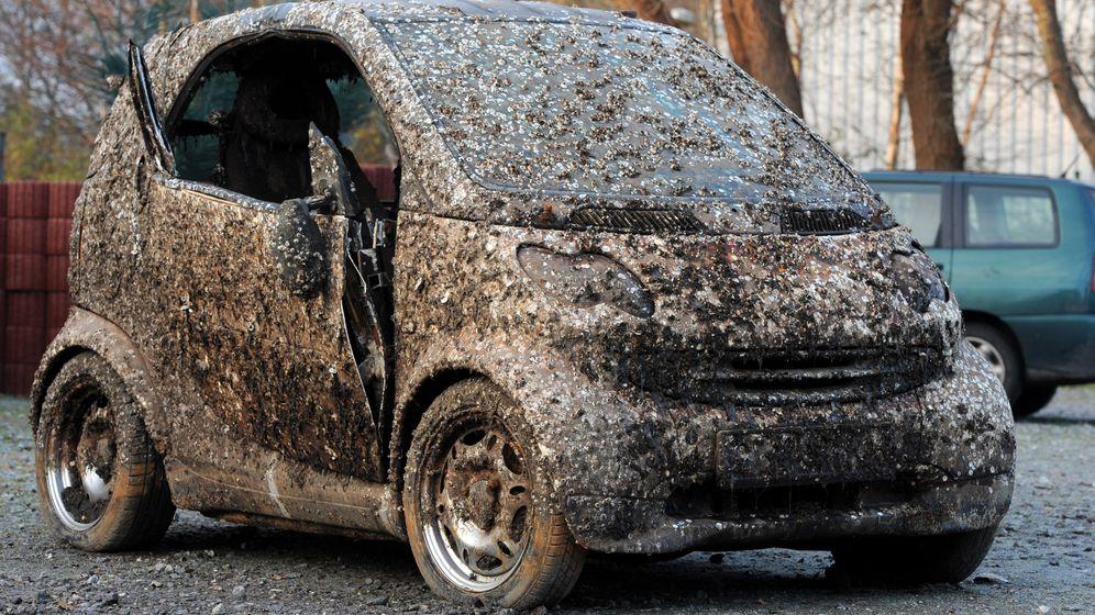 Wilhelmshaven: Geklautes Muschelauto versteigert