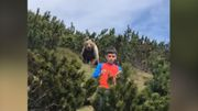 Zwölfjähriger von Braunbär verfolgt