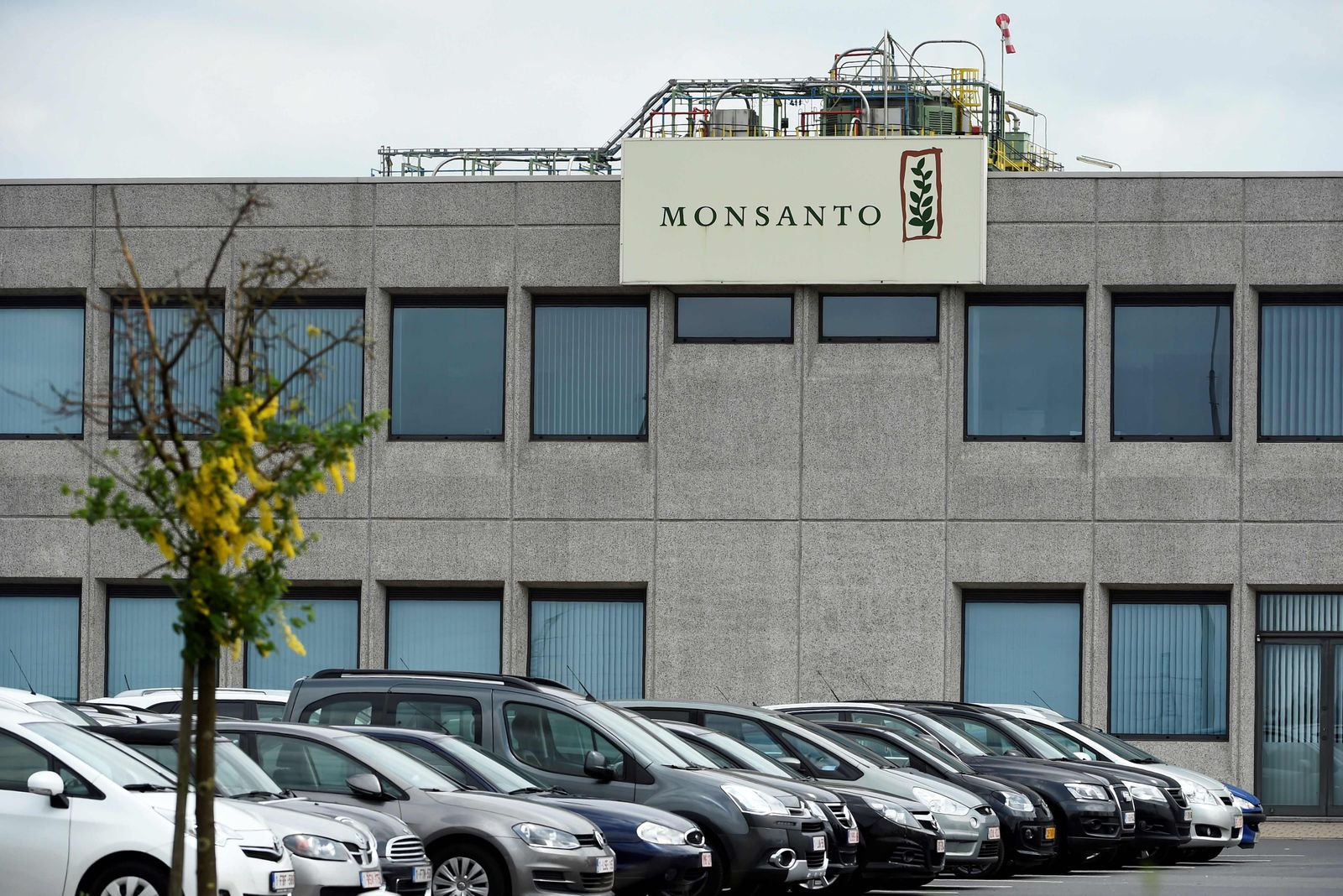 FILES-FRANCE-AGRICULTURE-HEALTH-TRIAL-MONSANTO