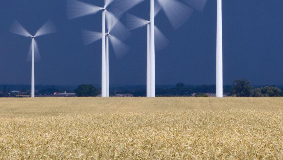Windkraftanlage in Brandenburg: Bei Windstille fliegen Fledermäuse von allen Seiten heran, bei stärkerem Wind bevorzugen sie den Windschatten