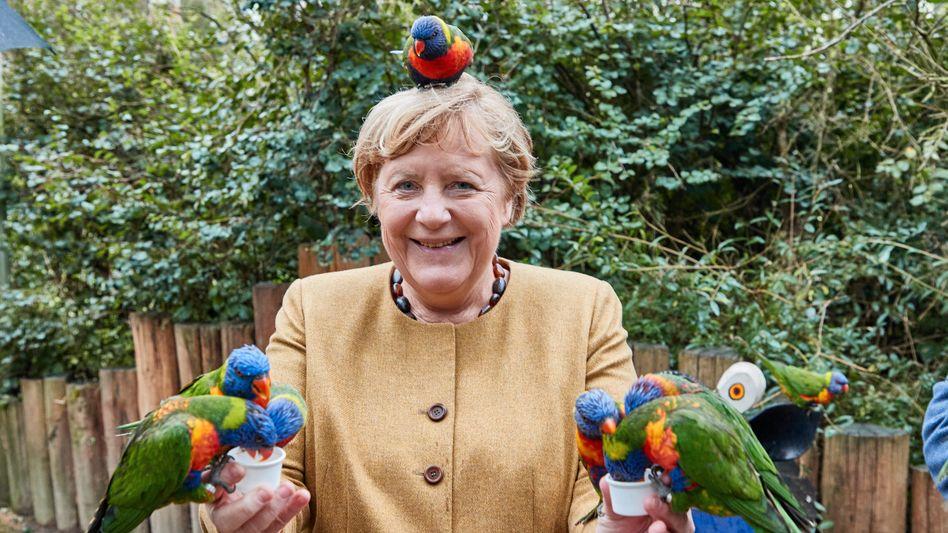 Ungewohnt offen: Kanzlerin Merkel gibt im Vogelpark den Landeplatz für australische Loris