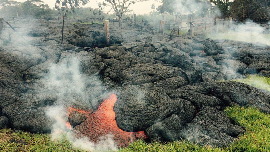 Hawaii: Lavaströme bedrohen Ortschaft