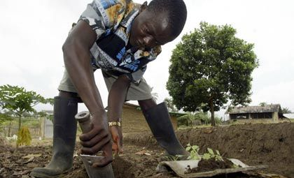 Entwicklungshilfe (in Liberia): Reformbedürftig