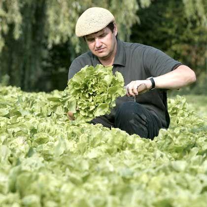 Biobauer: Neue Chancen